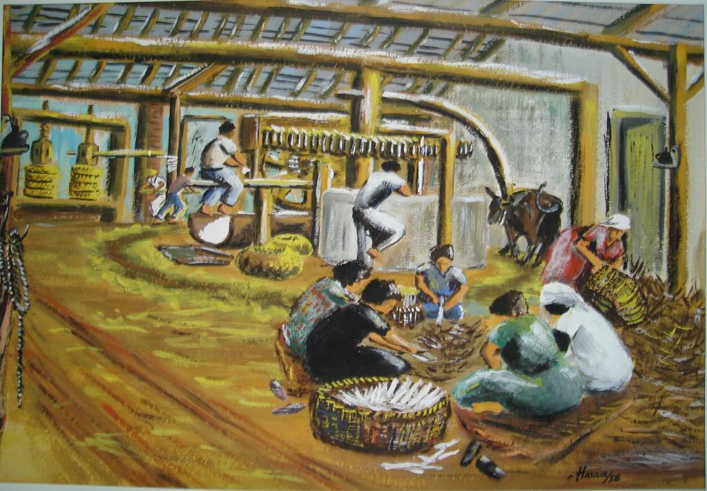 6.Engenho de farinhas